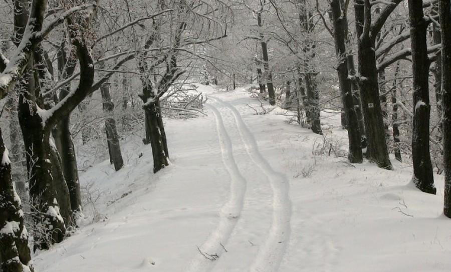 Friss előrejelzés: Ekkor érkezhet meg az első hó