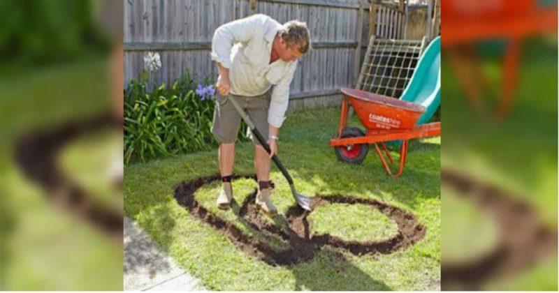 Senki sem értette, hogy miért ás ilyen furcsa barázdákat a kertben… az eredménytől minden szomszéd irigy lett!