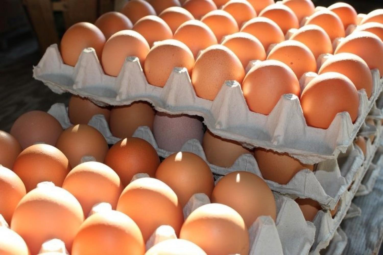 Nagyon durva áremelést jelentettek be! Pár héten belül az egekbe ugrik a tojás ára! Vérlázító, hogy mennyibe fog kerülni 1 tojás – itt az ár, ezen te is ledöbbensz!
