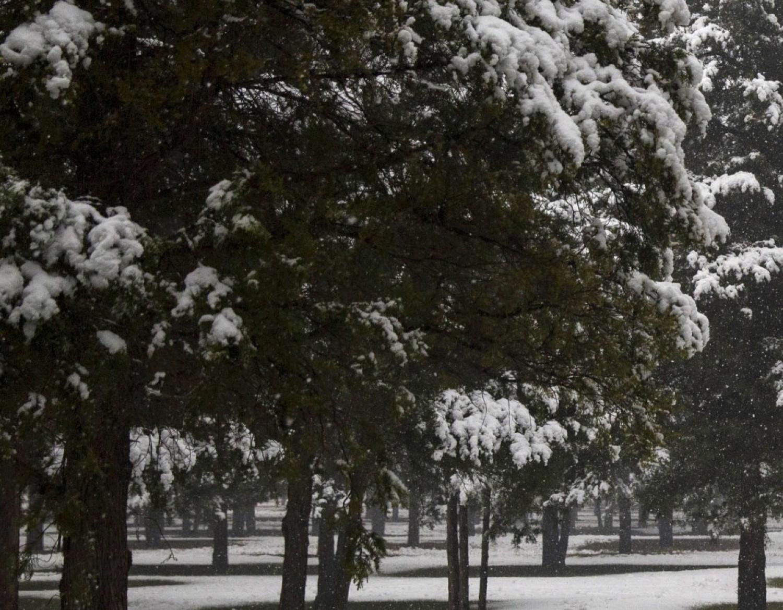 Friss: Magyarországon is esik a hó! Itt vannak az első felvételek a magyarországi havazásról