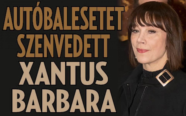 Tragikus hír érkezett: Autóbaleset érte Xantus Barbarát