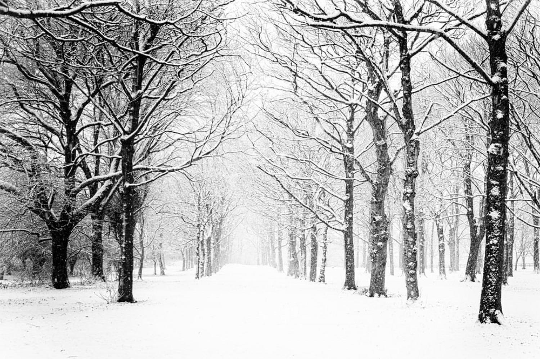 Ekkor érkezik a hó! Durva szél, hózápor és hideg váltja a tavaszias időt: ekkor ér ide!