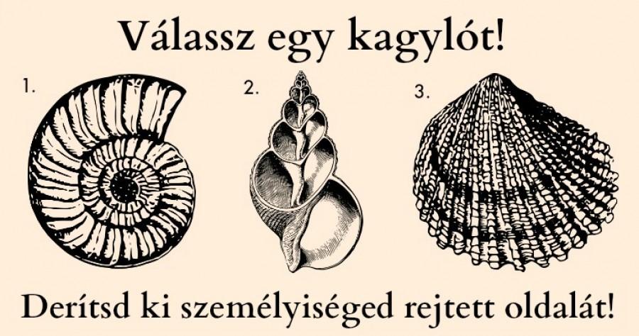 Te melyik kagylót választod? - Olvasd el, hogy mit árul el személyiséged rejtett oldaláról...