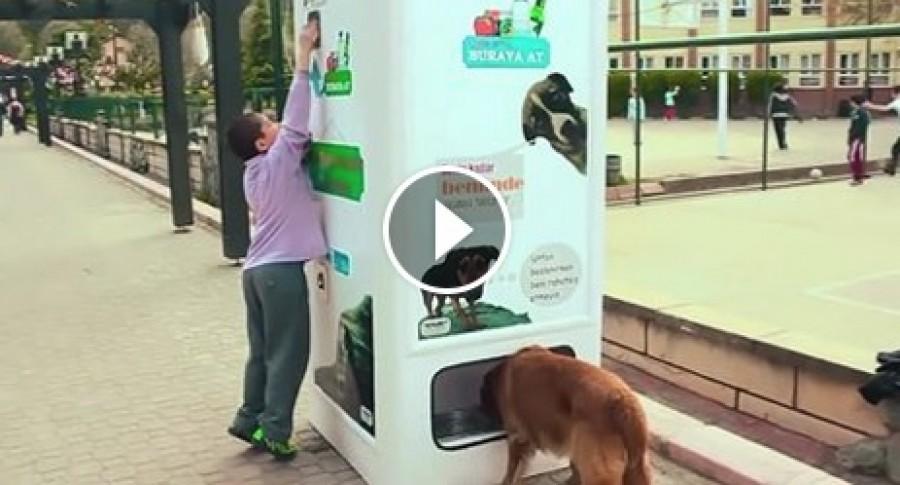 Ez az automata eteti és itatja a kóbor állatokat! Az embereknek csak ezt kell bedobnia és már jön és az étel-ital a kutyusoknak.