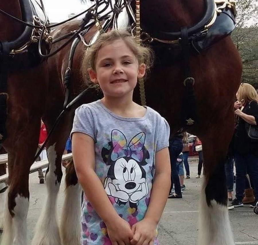 Az apa lefényképezi kislányát a ló előtt – mikor megnézi a képet óriásit nevet