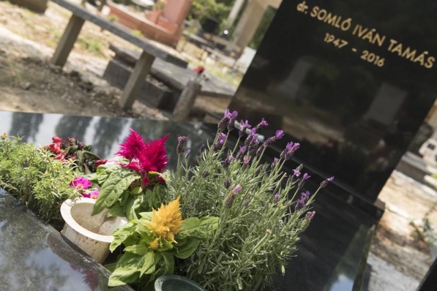 Így avatták fel Somló Tamás sírhelyét! Sokan tiszteletüket tették a temetőben!
