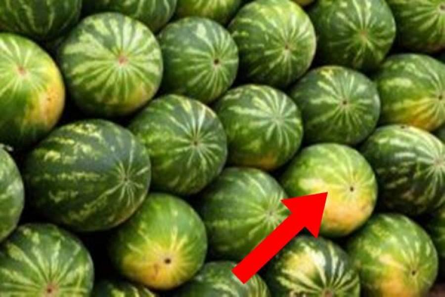 3 nyomós ok amiért nem szabad este, lefekvés előtt görögdinnyét enni!