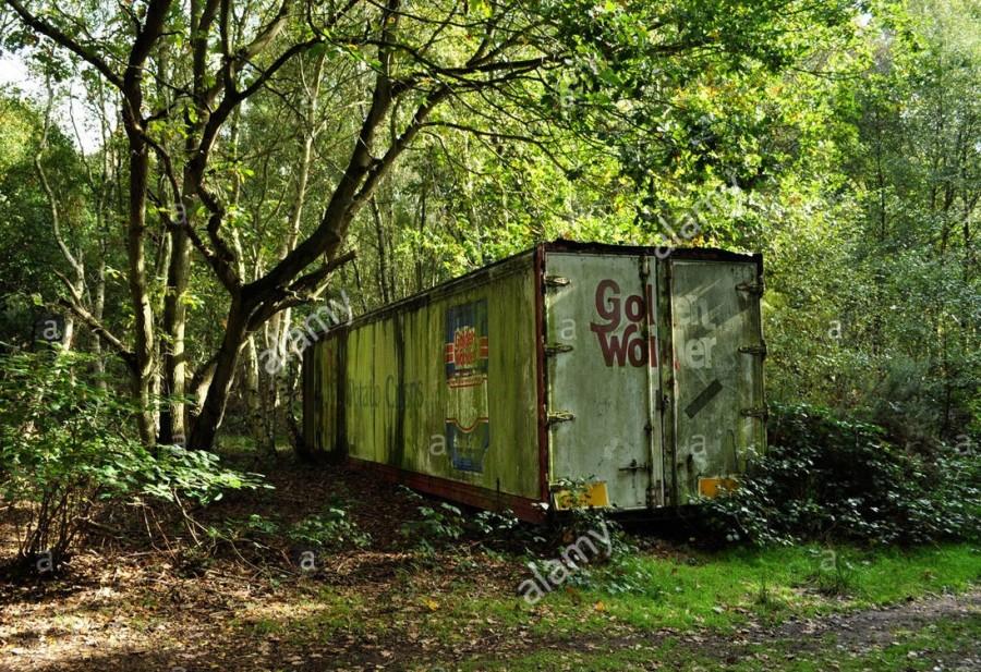 Három konténert találtak az erdőben, nem fogod elhinni, hogy mi van bennük!