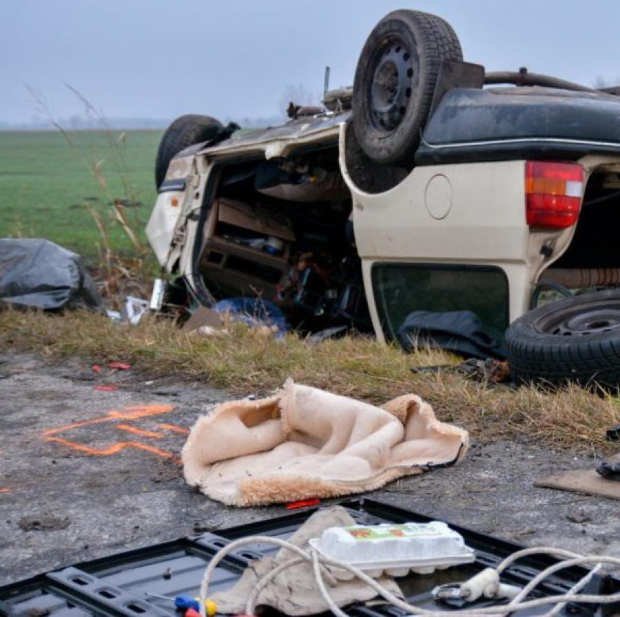 Szívszorító fotó: elhunyt gazdáját várta egy kutya a bács-kiskuni balesetnél