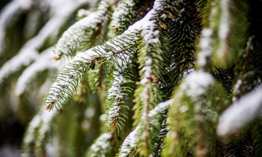 Íme: itt lesz Magyarországon fehér a karácsony idén