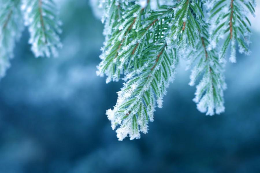 Durva dolgokat mondott a februári időjárásról Bálint gazda. Ennek nagyon nem fogsz örülni
