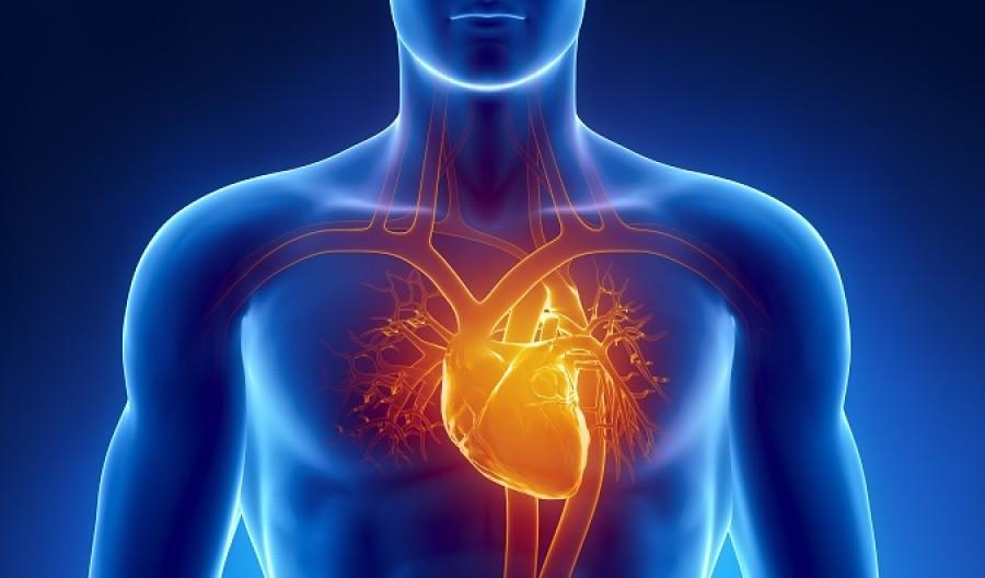 Az alábbi 5 tünet egy hónappal előre jelzi a szívinfarktust. Figyelj oda rájuk, az életedet mentheti meg!