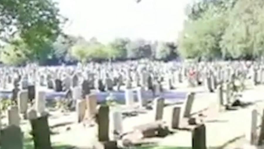 Amióta ezt a szörnyűséget látta a gyászoló nagymama férje sírjánál, nem mer odamenni
