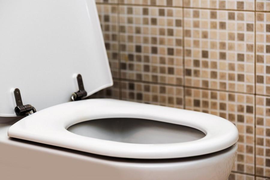 A légi utaskísérő tippje: így szabadulhatsz meg a WC szagától pillanatok alatt!
