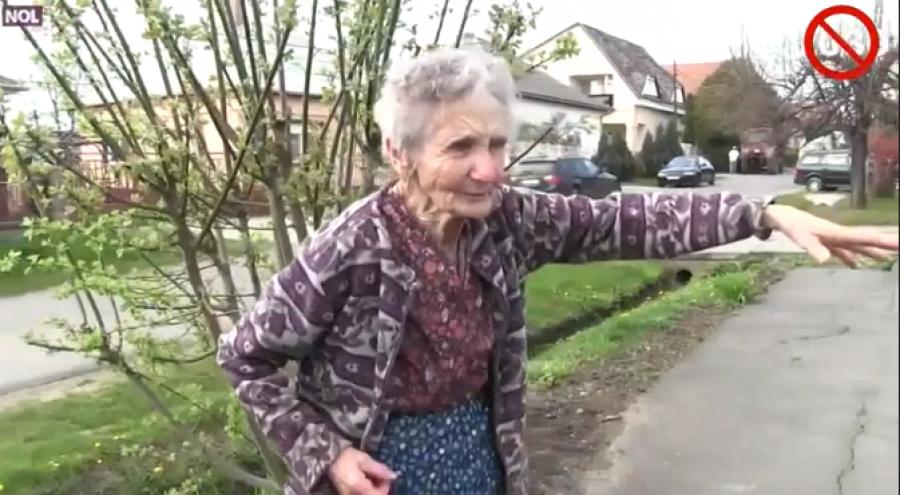 Felháborító: megbüntettek egy 85 éves idős nénit mert a kertjében lévő virágokat árulta-Videó