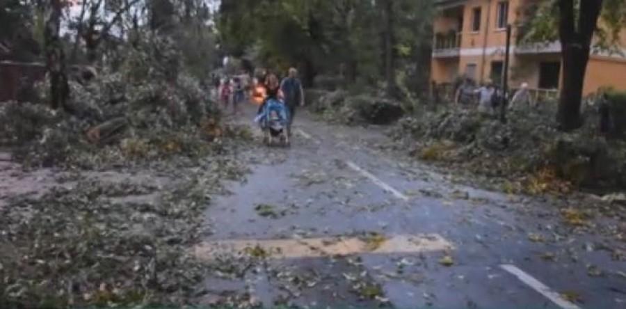 Friss! Elkezdődött, fákat dönt ki a jégesővel kísért vihar, ami szétverte Nyíregyházát. Videó