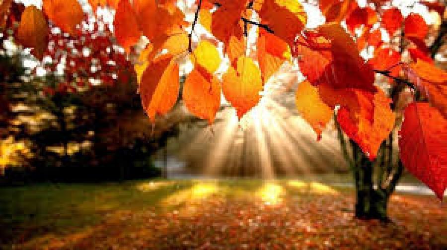 Időjárás: nem mindenhol lesz napsütéses az első októberi hétvége